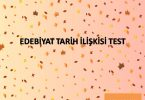 edebiyat tarih ilişkisi test