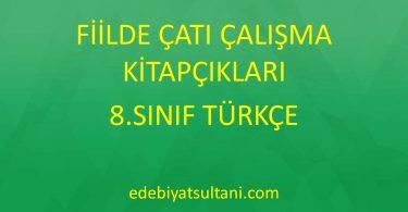 fiilde çatı çalışma kitapçıkları 8.sınıf Türkçe
