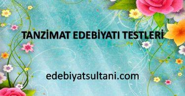 tanzimat edebiyatı testleri
