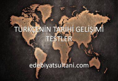 türkçenin tarihi gelişimi testler