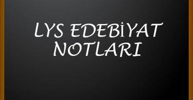 LYS EDEBİYAT NOTLARI