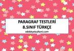 paragraf testleri 8.sinif turkce