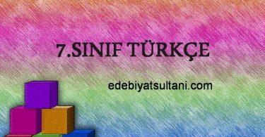 7.sinif turkce