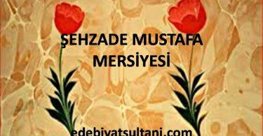 ŞEHZADE MUSTAFA MERSİYESİ
