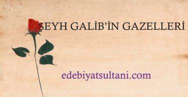 ŞEYH GALİBİN GAZELLERİ