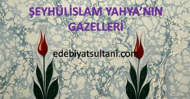 Şeyhülislam Yahya'nın Gazelleri