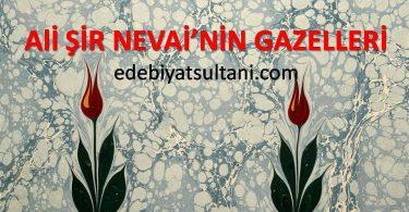 ALİ ŞİR NEVAİ'NİN GAZELLERİ