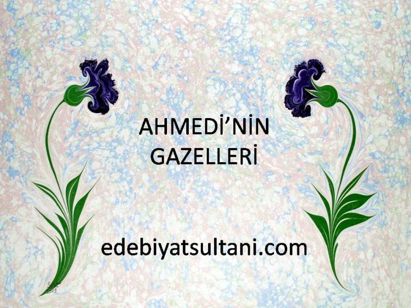 Ahmedi'nin Gazelleri