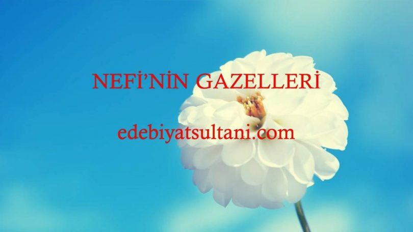 NEFİ'NİN GAZELLERİ