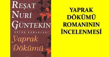 yaprak dökümü romanı