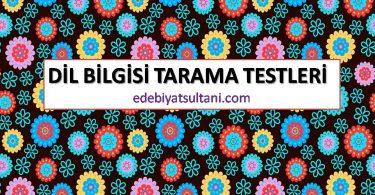 dil bilgisi tarama testleri