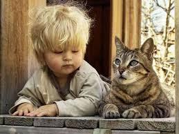 cocuklarin icindeki kediyi oldurme2