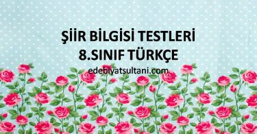 siir bilgisi testleri 8.sinif turkce