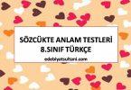 sozcukte anlam testleri 8.sinif turkce