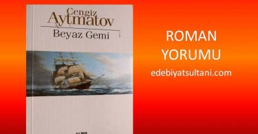 beyaz gemi roman yorumu