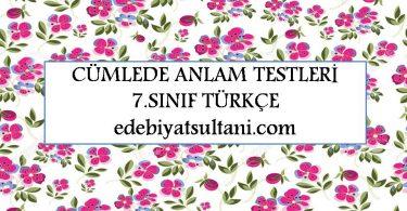 cumlede anlam testleri 7.sinif turkce