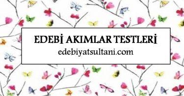 edebi akimlar testleri