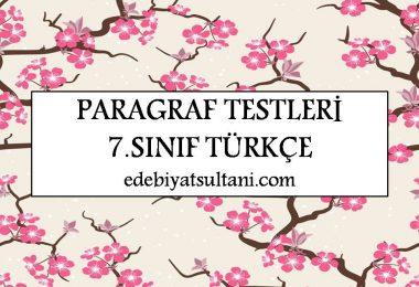 paragraf testleri 7.sinif turkce
