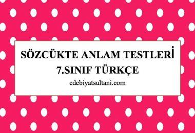 sozcukte anlam testleri 7.sinif turkce