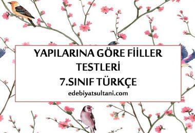 yapilarina gore fiiller testi 7.sinif turkce