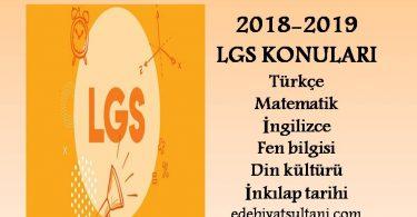 2018-2019 LGS konulari