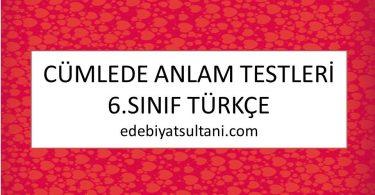 cumlede anlam testleri 6.sinif turkce