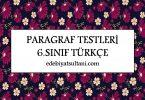 paragraf testleri 6.sinif turkce