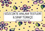 sozcukte anlam testleri 6.sinif turkce