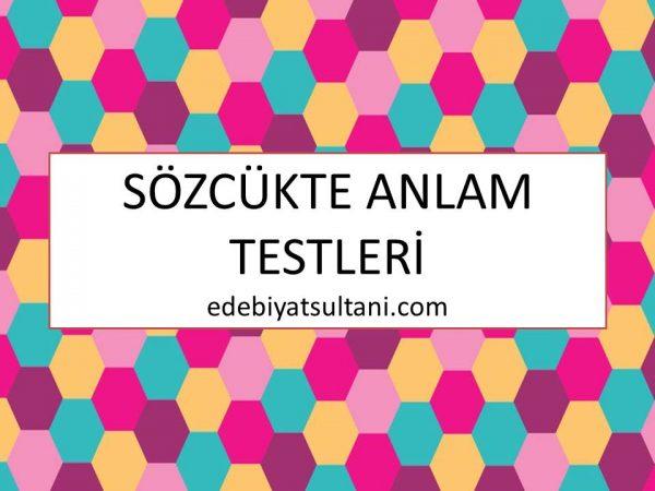 edebiyat sultani