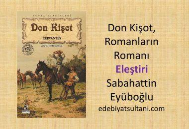 Don Kisot, Romanlarin Romani