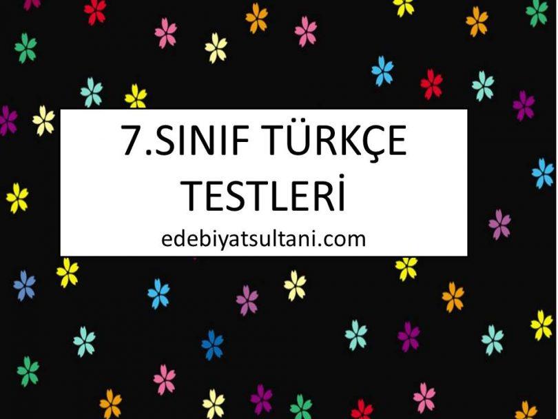 7.sinif turkce testleri